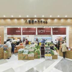 八百屋の九ちゃん MARK IS 福岡ももち店 店舗トータルデザイン